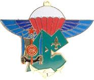 insignes du 2eme rpima 2RPIMa_1Cie_ISKOUTIR_Dijibouti