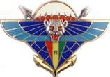 insignes du 2eme rpima 2RPIMa_1Cie_Op_TURQUOISE
