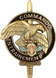 insignes du 2eme rpima 2RPIMa_Cdos